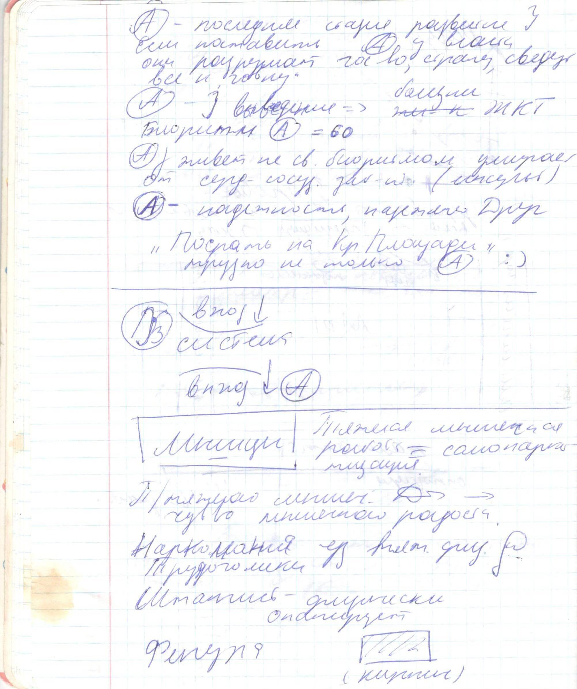 Конспекты ВиктОра Толкачева: Мышечный вектор